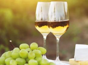 Magischer Wein: Friulano