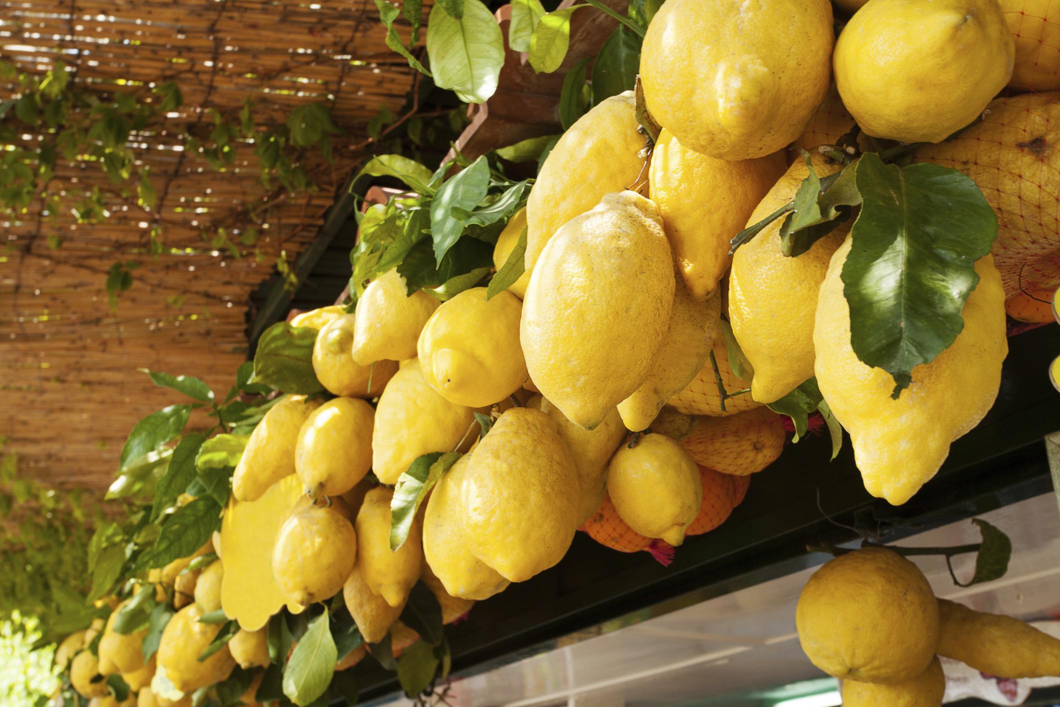 Sonnengereifte Zitronen