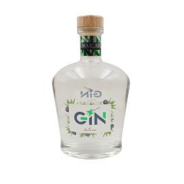 Gin Italiano