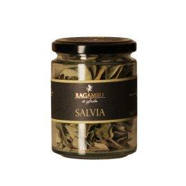 Salvia Secca